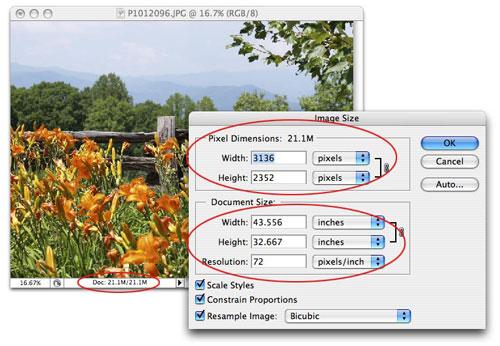 The Reality of Resizing Images in Photoshop - Layers Magazine