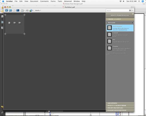 Acrobat 9: Creating Custom Portfolios