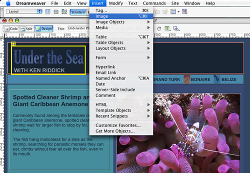 Designing with Layers in Dreamweaver 8 - Layers Magazine
