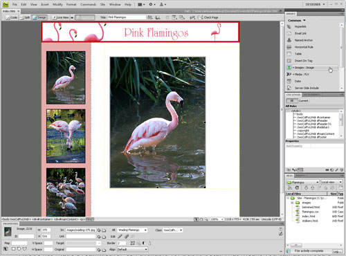 Test Driving Dreamweaver CS4