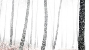 mjohnson_overcast_snowy_feature